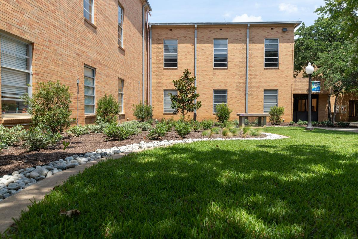 Student, faculty weigh in on benefits of campus greenery projects
