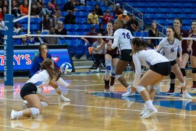 UTA volleyball team releases 2019 schedule