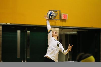 WSU volleyball sweeps Purdue Northwest for weekend split