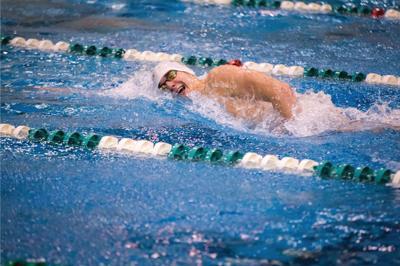 WSU men's and women's swim teams defeat Calvin College