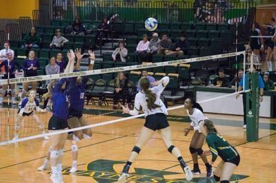 WSU volleyball beats Ashland; clinches tournament spot