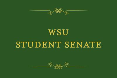 Student Senate approves pilot programs to be implemented next academic year
