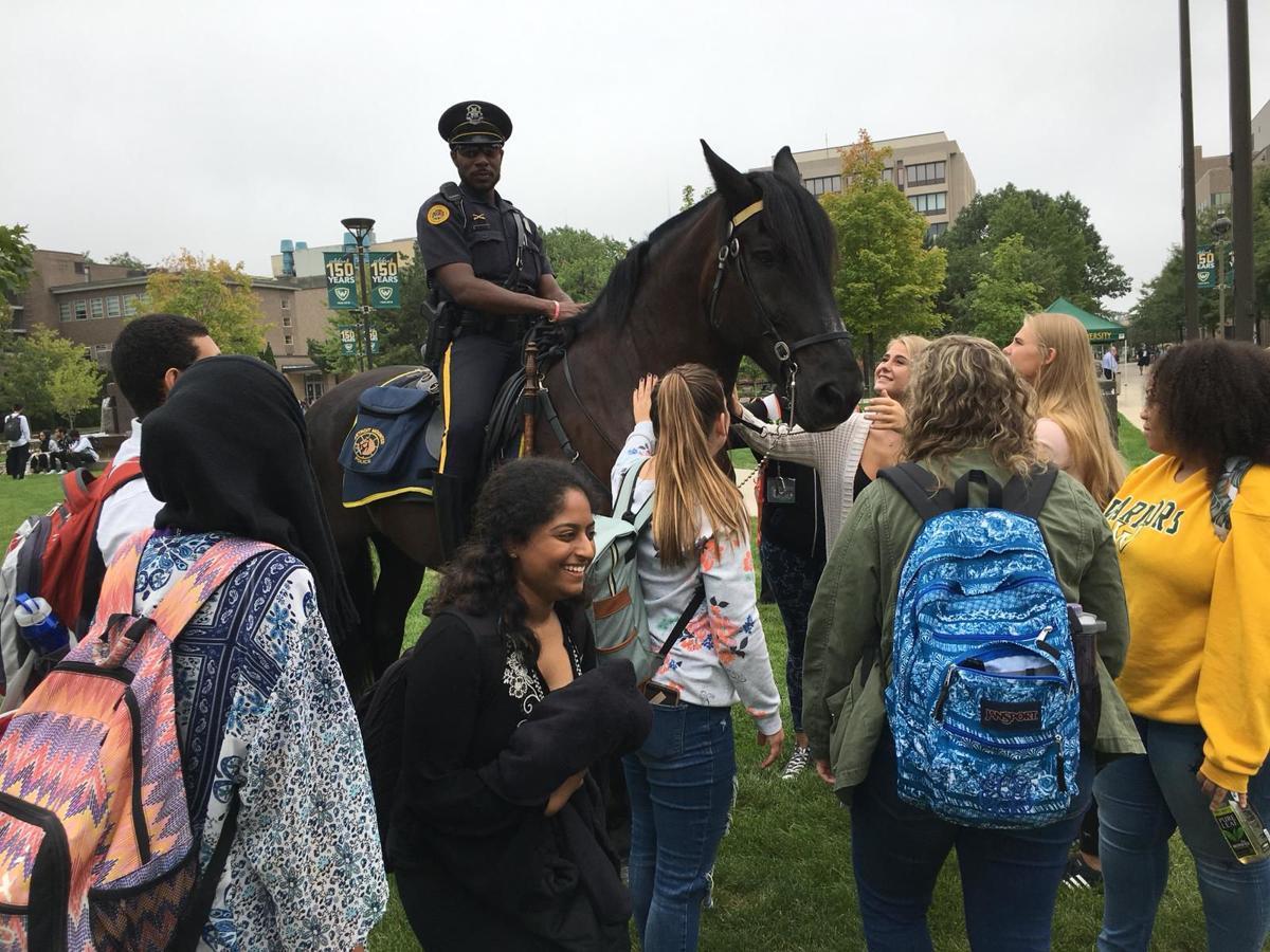 horse cop 2