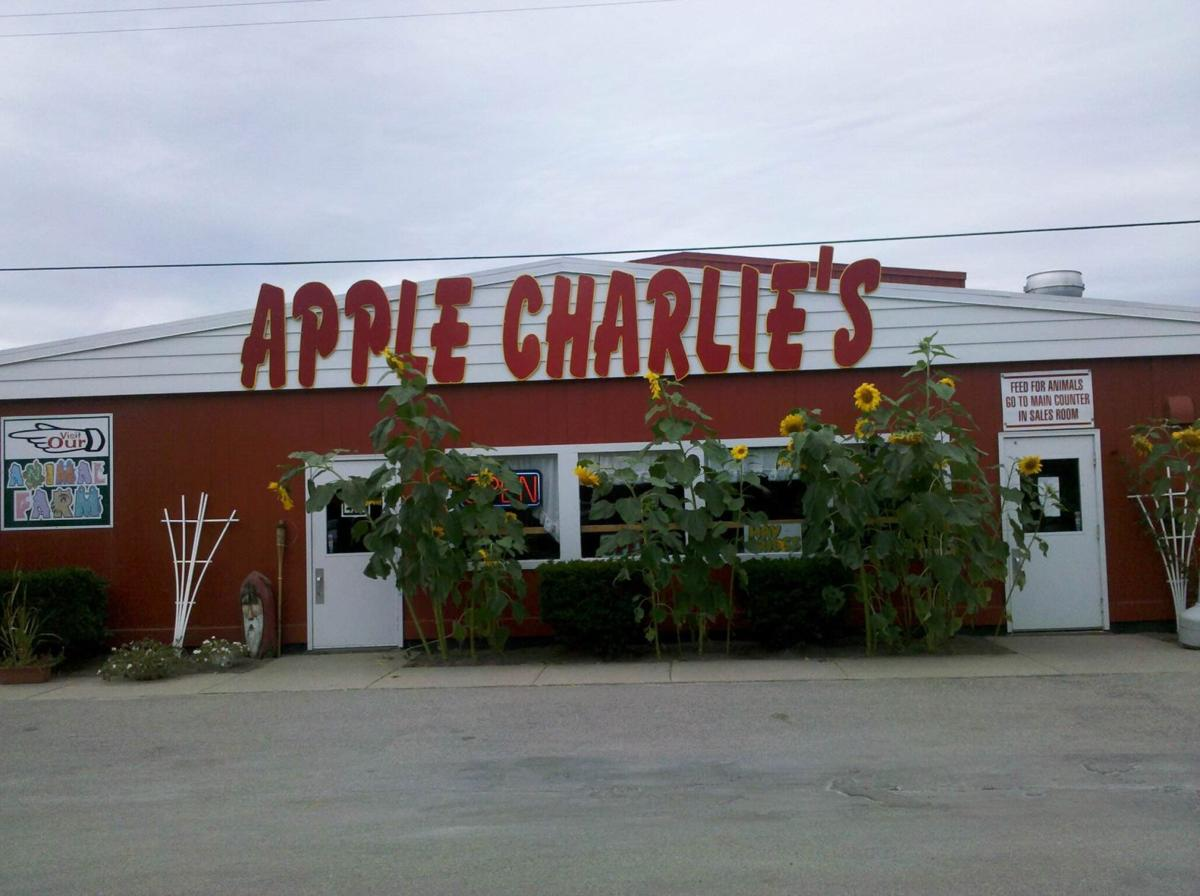 """Apple Charlie's features pony-rides, hayrides and on weekends they offer free entertainment, such as bands that like to play in their pavilion, along with food, their finest apples and pumpkins, and cider around."""