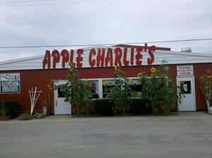 """""""Apple Charlie's features pony-rides, hayrides and on weekends they offer free entertainment, such as bands that like to play in their pavilion, along with food, their finest apples and pumpkins, and cider around."""""""