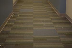 Food and other trash lined the hallways of Towers Residential Suites for days before being cleaned up.