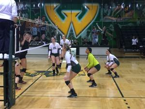 Warriors volleyball team falls to Davenport Panthers