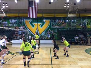 WSU volleyball's win streak comes to an end