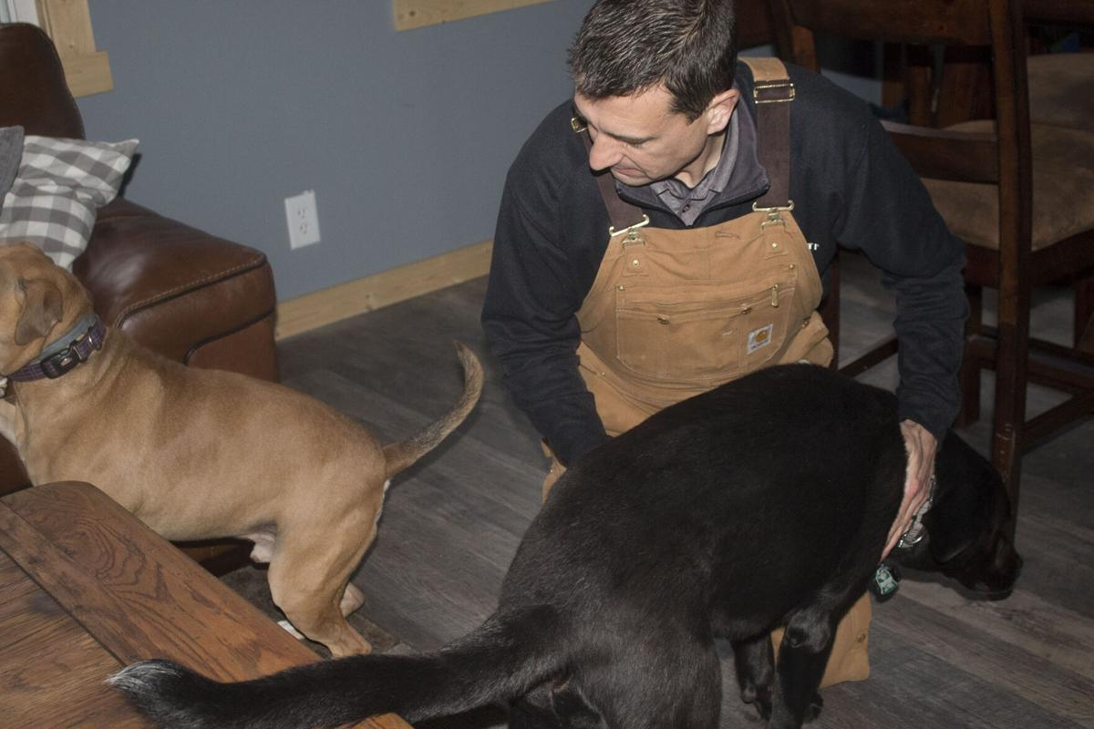 Therapy dogs lend a paw to those in need
