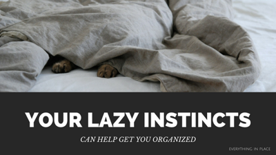 Houses & Homes: Your lazy instincts can help get you organized
