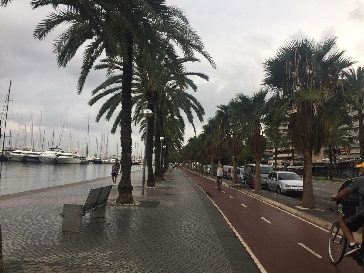 Daniela Caputo's Destinations: Port of call: Palma De Mallorca
