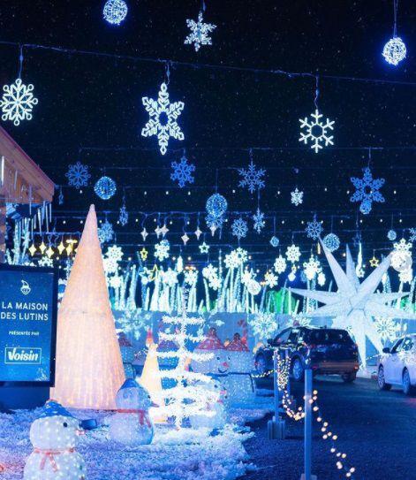 Illumi will illuminate your holiday season