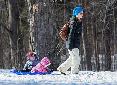 Morgan Arboretum launching its annual Benefit Christmas Sale