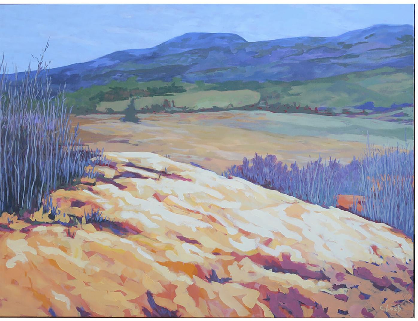 Two artists painting Canada from coast to coast in celebration of country's 150th birthday
