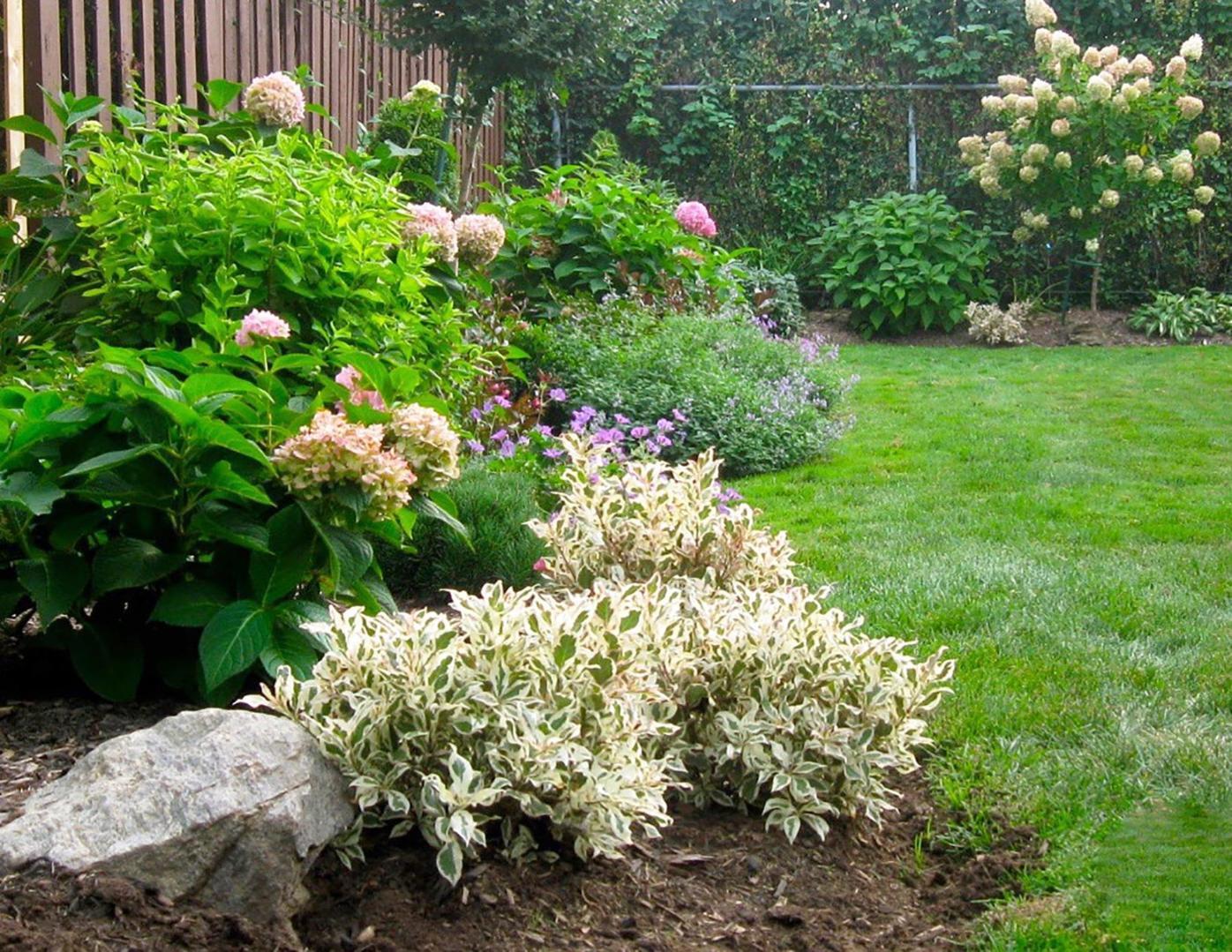 Elaine Sanders: Low-maintenance flowers