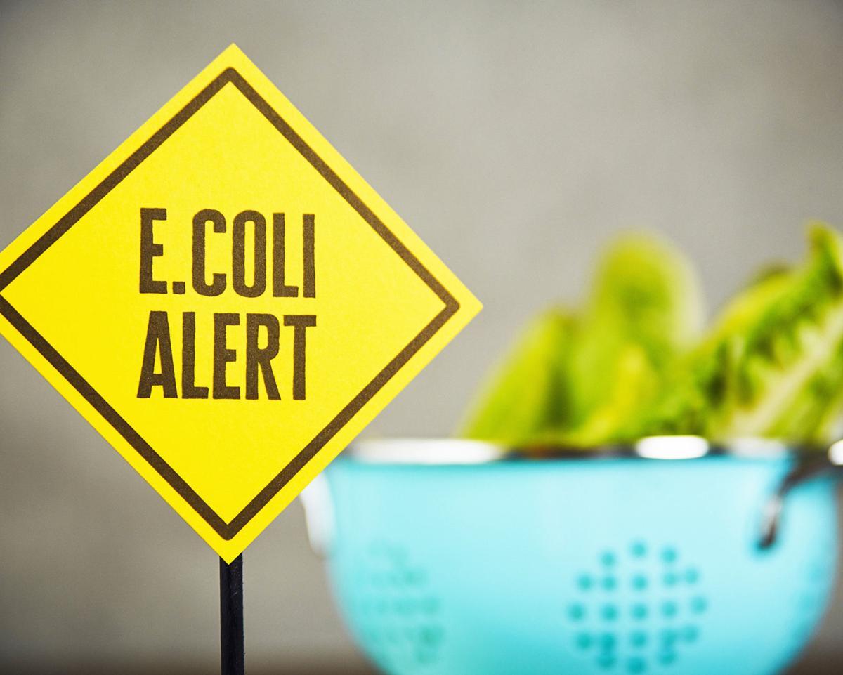 Dr. Mitch Shulman: E. coli … again!