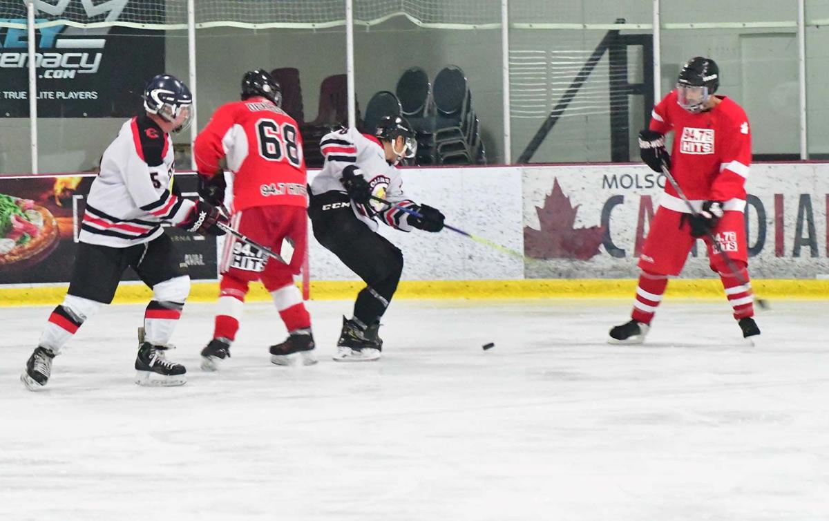 Local media, celebrities and former professionals hit the ice at hockey marathon
