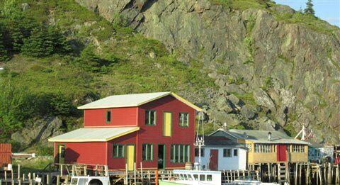 Daniela Caputo's Destinations: Newfoundland virtually