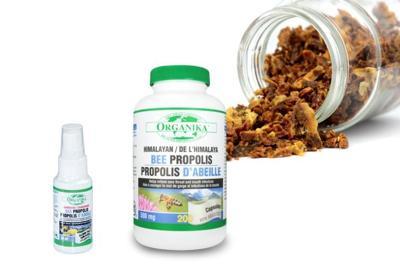 Healthy Living With TAU: NATUROPATH'S FAVORITE CHOICE - Organika's Bee Propolis