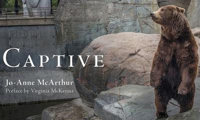 Award-winning Canadian photojournalist Jo-Anne McArthur presents Captive