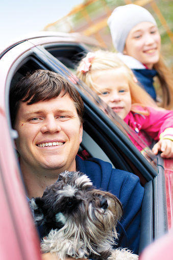 Pet talk: Traveling with pets in your car