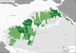 Montreal to create 3,000 hectare green space park