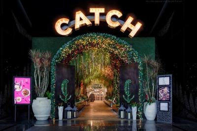 Catch Entry