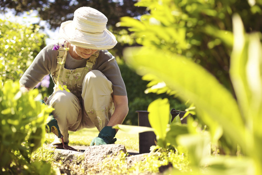 Garden your way to a healthy life