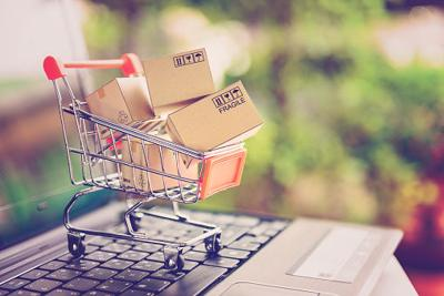 Parenting 101: Hard and steadfast rules of online shopping