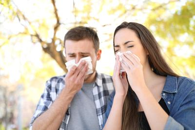 Dr. Mitch Shulman: How to cope with seasonal allergies