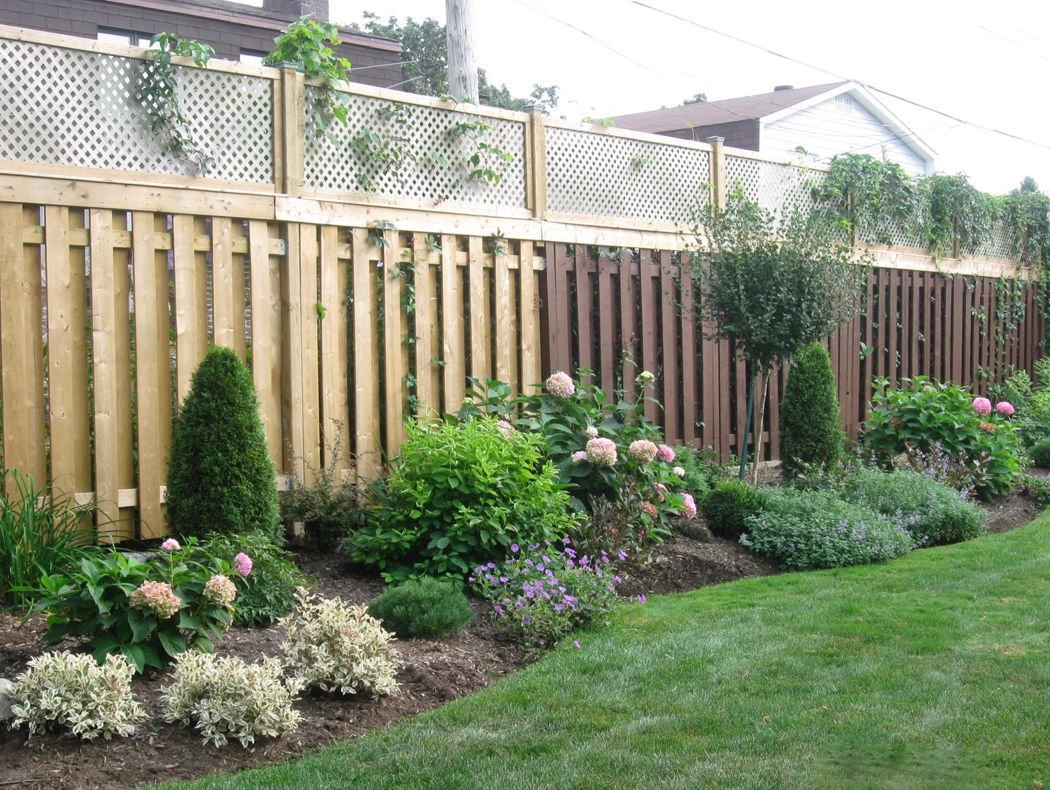Creating privacy in your landscape