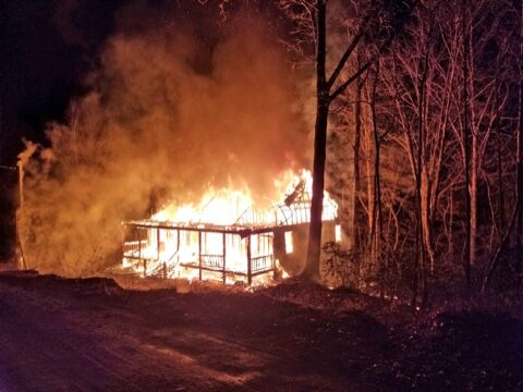 Savannah fire coggins pumpkintown road