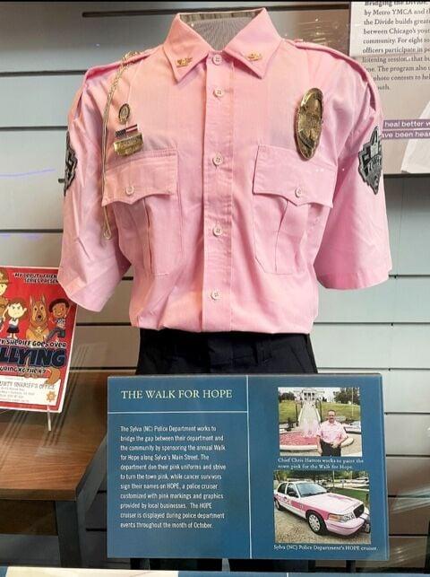pink shirt walk for hope spd
