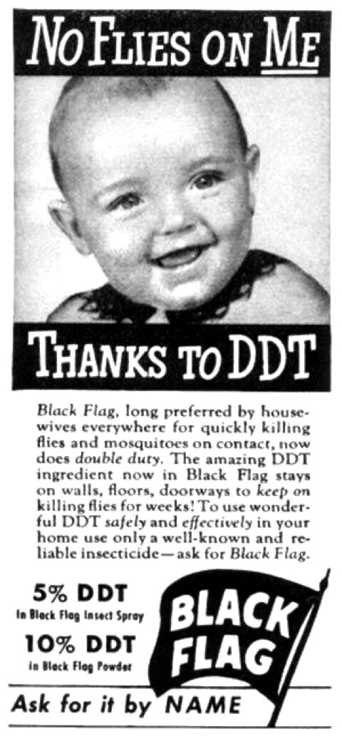 DDT ad
