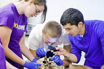 WCU's forensic anthropology program