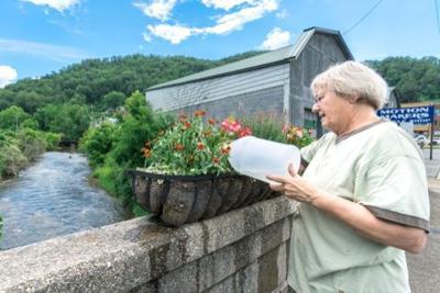 Sylva Garden Club Kathy Montgomery