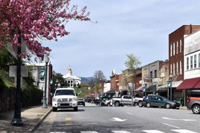 Downtown cherry tree spring Sylva