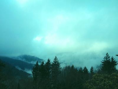 """Fog over Waterrock Knob"""