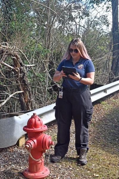 fire hydrant mapping chyan gallardo