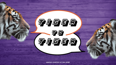 Tiger To Tiger Graphic
