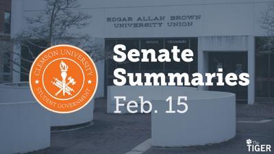 SenateSummariesFeb15