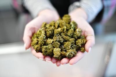 Lawsuit over false arrest for possession of hemp dismissed