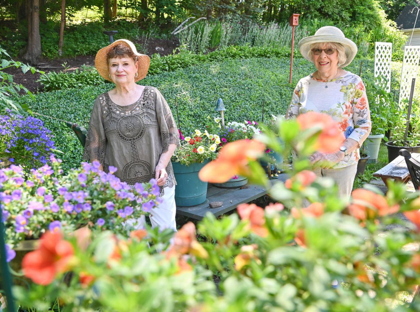 North Pocono group plans virtual garden tour