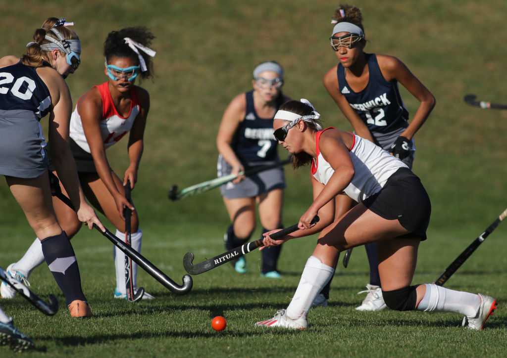 Lackawanna Trail's Coleman develops into leader of the pride in field hockey