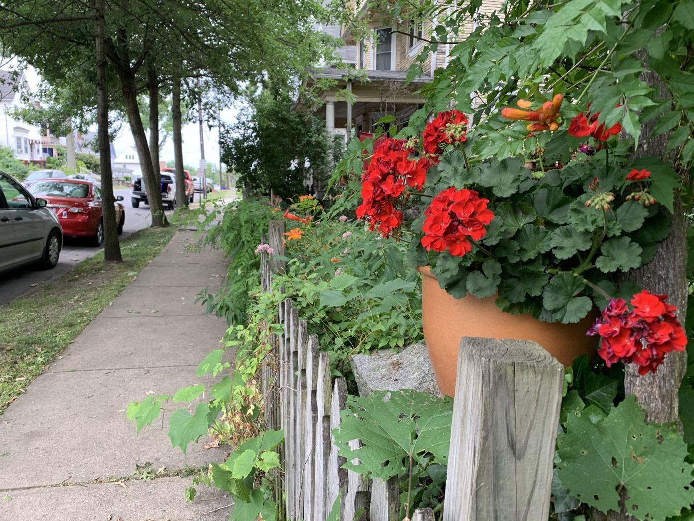 Beautiful Blocks program boosts Scranton neighborhoods