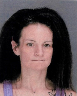 Scott Twp. woman cut police officer's hands with razor