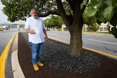 Anthracite to see in Scranton: coal used in landscaping on Mulberry Street medians