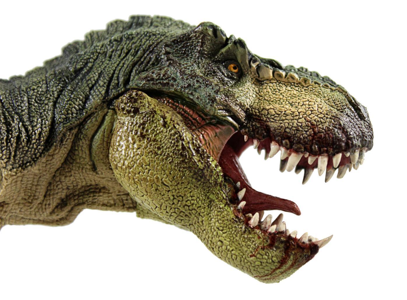 Jurassic Wonder Dinosaur Drive-Through