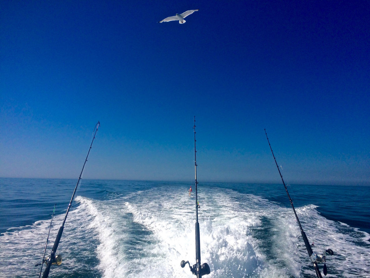 Ocean Fishing blue economy