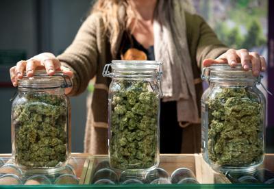 Recreational cannabis, marijuana